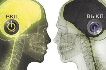 vkljuchi-mozg